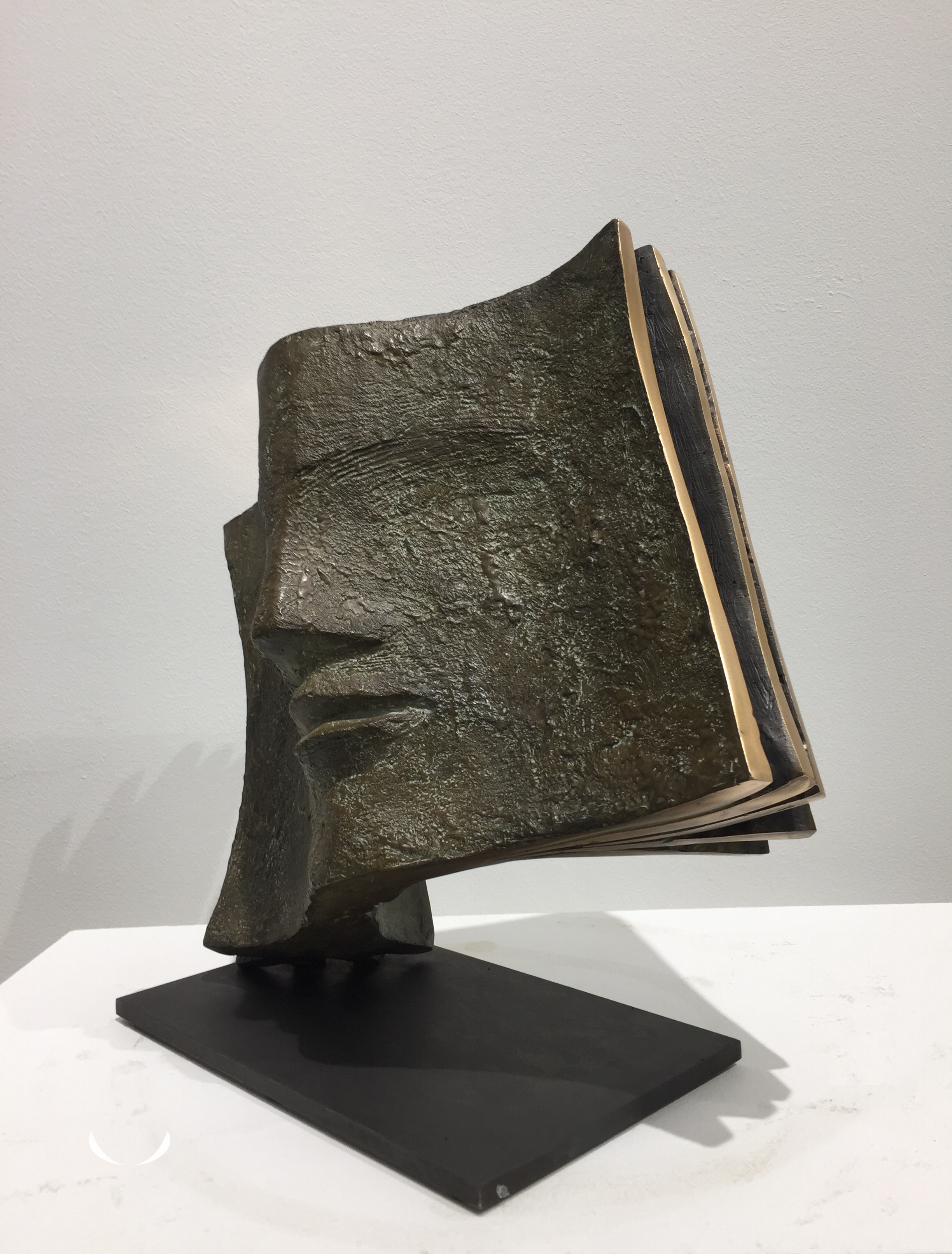 LIBRETTO Bronze 35x30x15cm / 13,7x11,8x5,9 inches