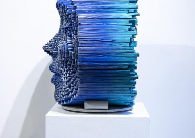 Gil Bruvel - Symbiosis 4