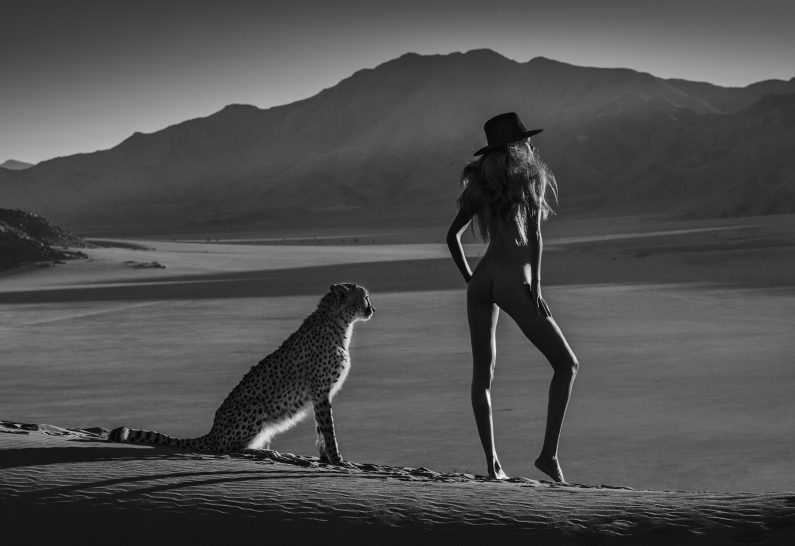 AFRICAN TAIL Archival Pigment Prints. Limited Edition 94x137cm/37x54 inches