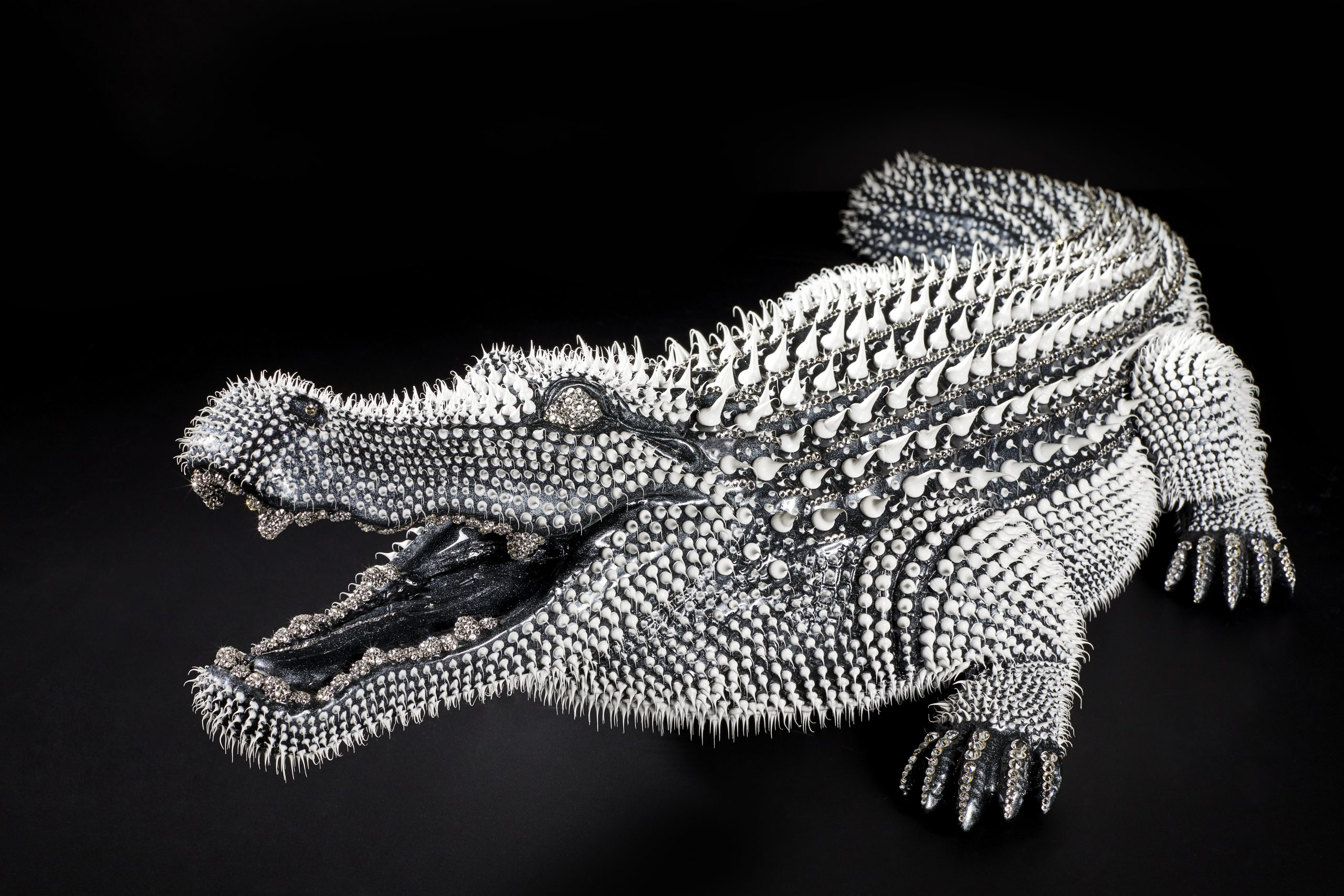 CROCODILE Mixte 310x100 cm/122 x  39.4 inches